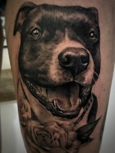 Dog - Michele Agostini - Rome (Italy)